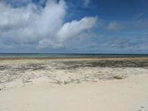 Diani Sand